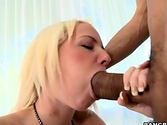 Alexia meets their way arch monster nefarious boner and takes hose down almost their way tiny image